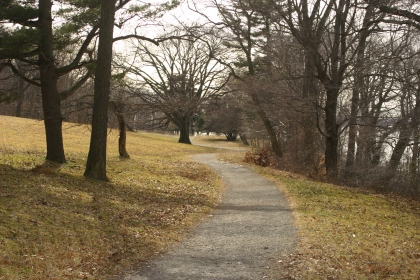 The view along the trails last January at the Rockefeller Preserve
