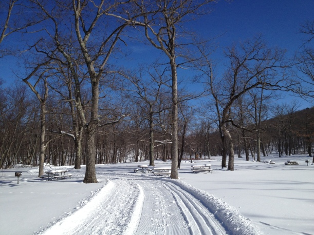 Scenes along the trail on a glorious winter day in New Jersey